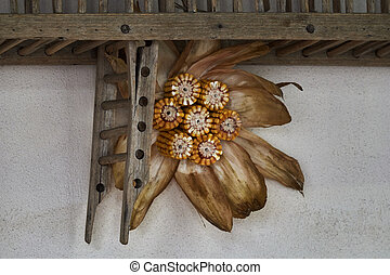 decoration with cobs in the farm
