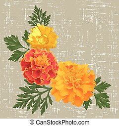 marigolds - decorative background with calendula and ...