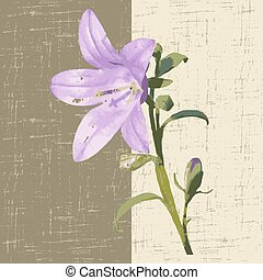 campanula - decorative background with flower campanula....