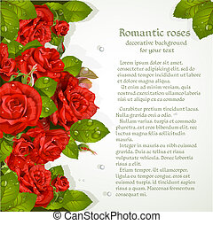 Decorative background with red roses for your text