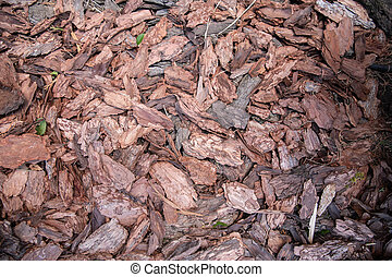 decorative bark. brown chips bark particles for ornamental garden