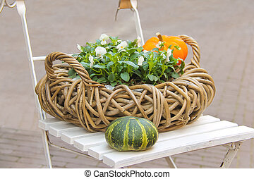 Decorative basket of flowers and pumpkins on a chair