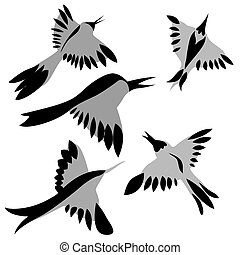 decorative birds drawing on white background, vector illustration