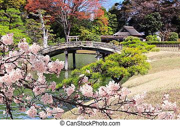 Decorative bridge in Koishikawa Korakuen garden, Okayama, ...