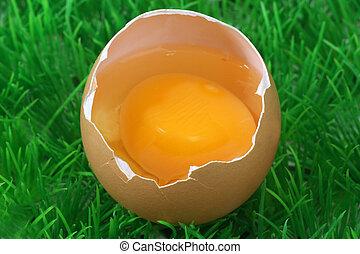 Decorative brown eggs