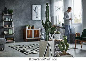 Decorative cactus in simple pot