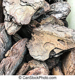 Decorative chips from bark of tree