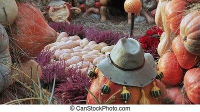 "Decorative design street autumn gastronomic festival ""Golden..."