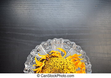 decorative dry sunflowers on a black wooden base