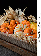 Decorative Gourds in Wood Crate