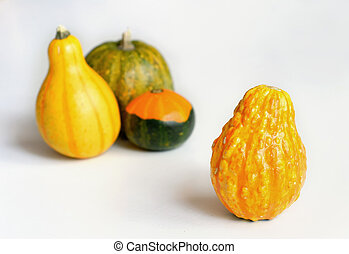 Decorative Gourds on White Table 2