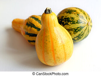 Decorative Gourds on White Table 4