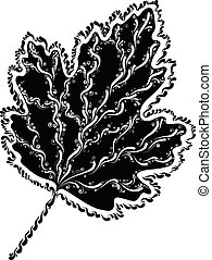 decorative grape leaf