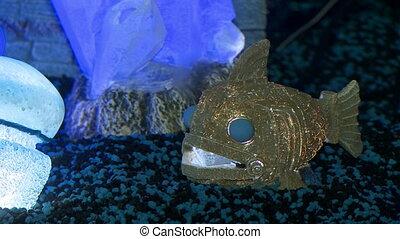 Decorative lighting in aquarium