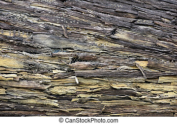 Decorative old wooden wall texture background