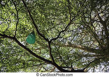 Decorative outdoor light hanging on tree