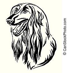 Decorative portrait of Afghan Hound Dog vector illustration