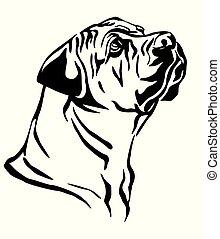 Decorative portrait of Boerboel Dog vector illustration