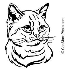 Decorative portrait of Cat 1