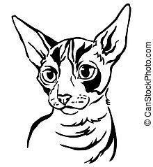 Decorative portrait of Cat 4