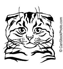 Decorative portrait of Cat 6
