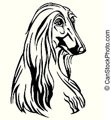 Decorative portrait of Dog Afghan Hound, vector isolated illustration in black color on white background. Image for design and tattoo.