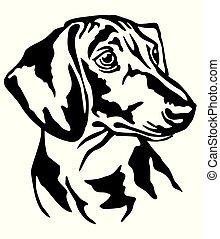 Decorative portrait of Dog Dachshund vector illustration