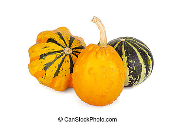 Decorative pumpkins collection isolated on white background