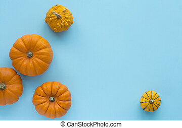 Decorative pumpkins on a blue background top view