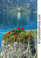 Decorative red flowers, Lake Bled, Slovenia