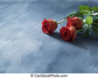 Decorative red fresh red roses on a blue background. Selective focus.