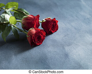 Decorative red fresh red roses on greyblue background. Selective focus