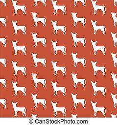 chihuahua wallpaper