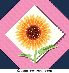 beautiful sunflower icon