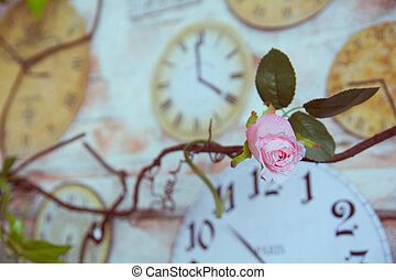 Decorative rose against the background wall clock in the interior of the room