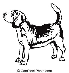Decorative standing portrait of beagle vector illustration...