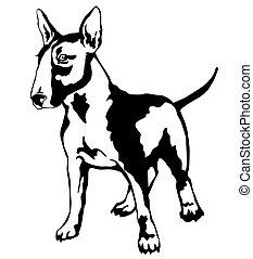 Decorative standing portrait of dog Bull terrier, vector illustration