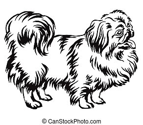 Decorative standing portrait of dog Pekingese vector illustration