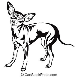 Decorative standing portrait of dog Prague Ratter vector illustration