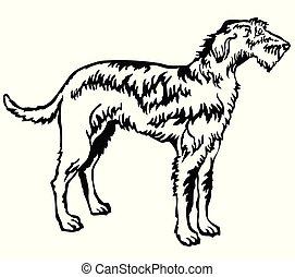 Decorative standing portrait of Irish Wolfhound vector illustration