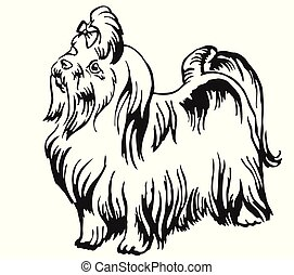 Decorative standing portrait of Maltese dog vector illustration