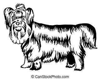 Decorative standing portrait of Yorkshire Terrier vector illustration