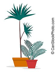 Decorative topiary tree in pot isolated at white background...