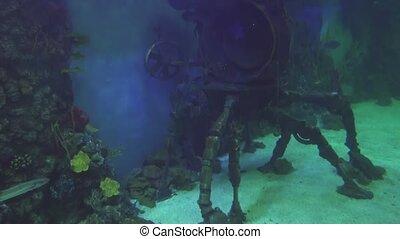 Decorative underwater bathyscaphe decoration of marine aquarium stock footage video