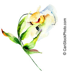 Decorative white flower, watercolor illustration