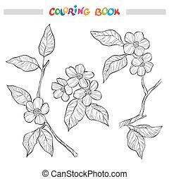 decorativo, colorido, branches., jardín, primavera, libro, negro, florido, página blanca, elementos, illustration.