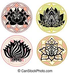 decorativo, conjunto, ilustración, lotu