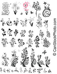 decorativo, elementos florales, diseño, (