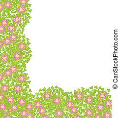 decorativo, esquina, elemento, con, rosa florece