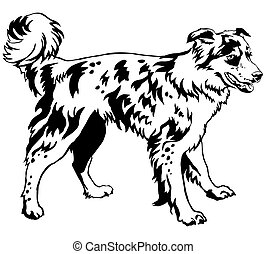 decorativo, ficar, collie, cão, ilustração, vetorial, retrato, borda